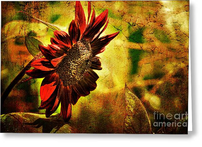 Autumn Flowers Greeting Cards - Sunflower Greeting Card by Lois Bryan