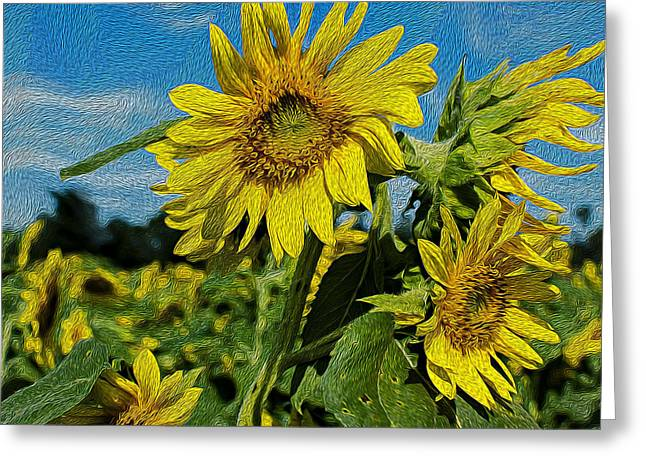 SunFlower Greeting Card by Lucinda  M Wickham