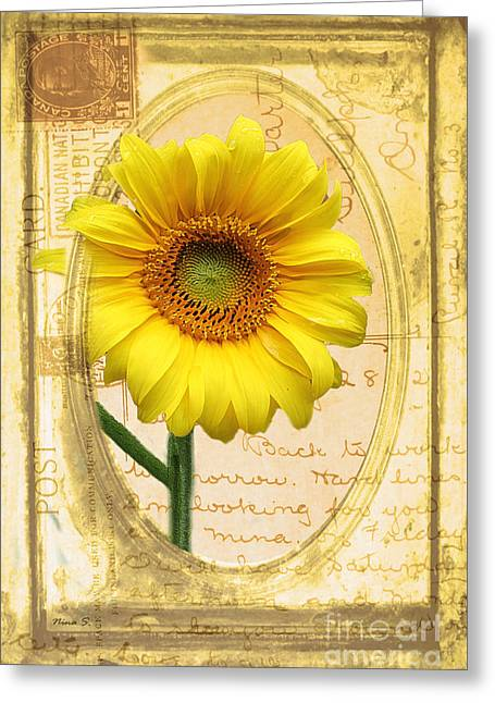 Old Digital Art Greeting Cards - Sunflower on Vintage Postcard Greeting Card by Nina Silver