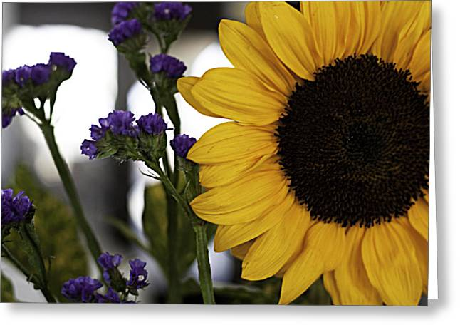 Sunflower Right Greeting Card by Kevin  Sherf
