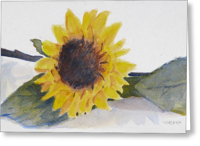 Sunflower Study Greeting Card by Christopher Reid