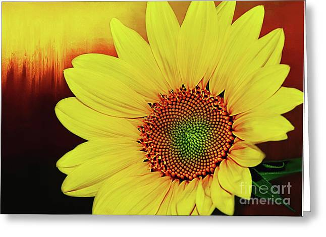 Nature Greeting Cards - Sunflower Sunset by Kaye Menner Greeting Card by Kaye Menner