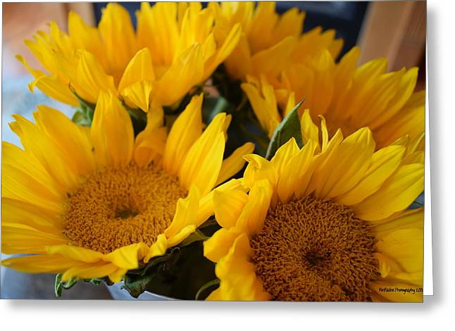 Sunflower Surprise Greeting Card by Roe Rader