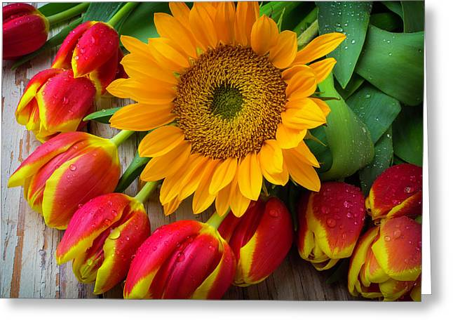 Sunflower With Red And Yellow Tulips Greeting Card by Garry Gay