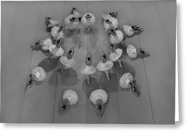Ballet Dancers Greeting Cards - Sunflowers Greeting Card by Artyom Shlapachenko