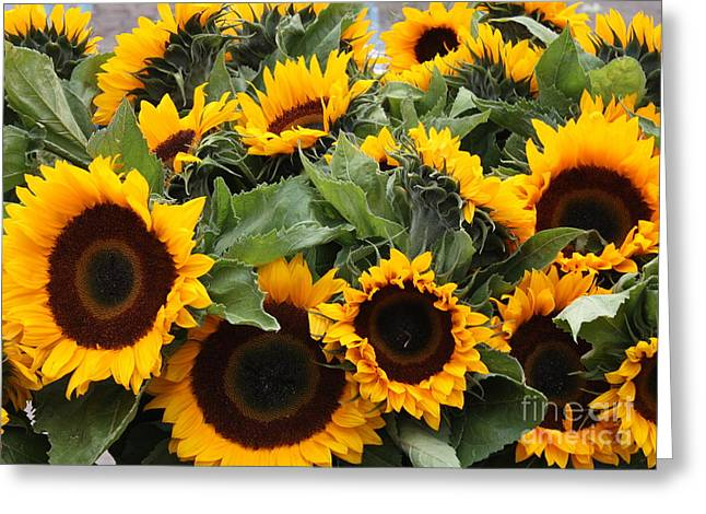 European Markets Greeting Cards - Sunflowers at the Market Greeting Card by Carol Groenen