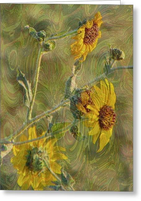 Yellow Sunflower Greeting Cards - Sunflowers Il Greeting Card by Kathy Franklin