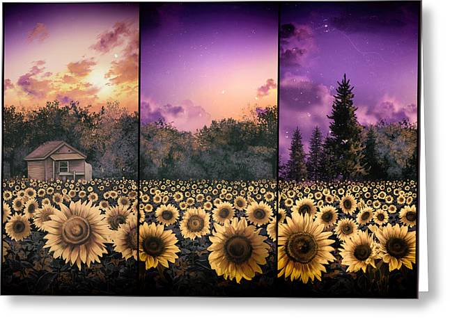 Garden Scene Digital Greeting Cards - Sunflowers triptych 2 Greeting Card by MB Art factory