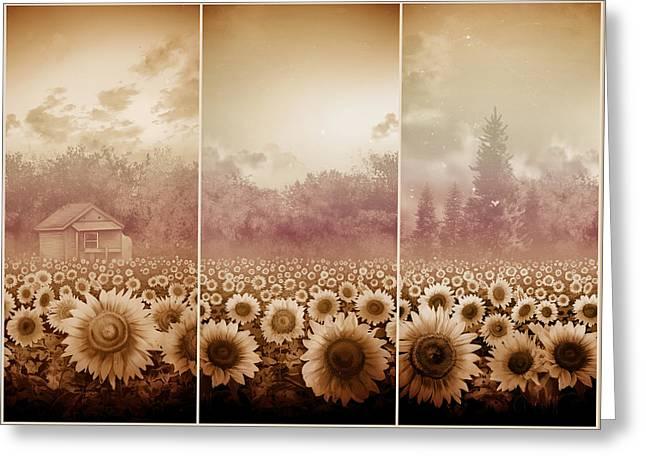 Sunflowers Triptych 3 Greeting Card by Bekim Art