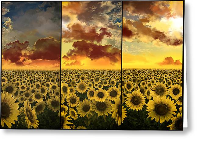 Garden Scene Digital Greeting Cards - Sunflowers triptych Greeting Card by MB Art factory