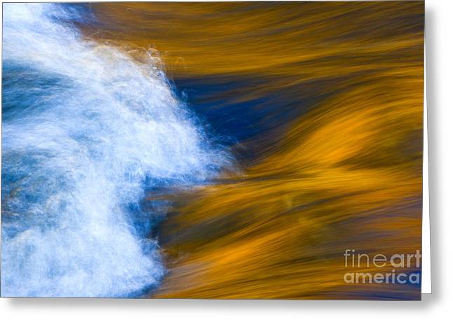 Sunlight On Flowing River Greeting Card by Bill Brennan - Printscapes