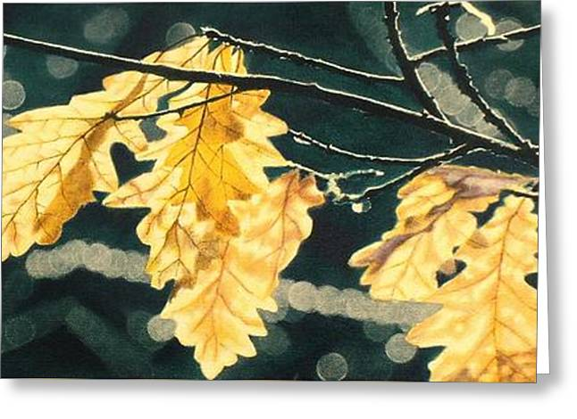 Bokeh Paintings Greeting Cards - Sunlight Through Golden Leaves Greeting Card by Grant Ham