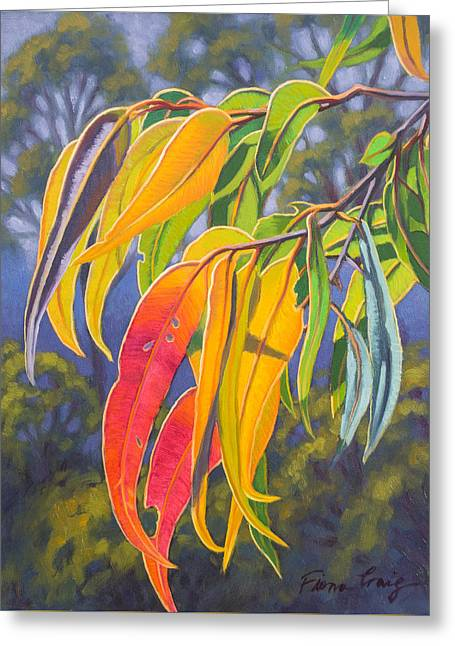 Sunlit Gumleaves 10 Greeting Card by Fiona Craig