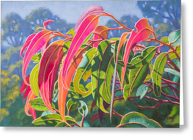 Sunlit Gumleaves 12 Greeting Card by Fiona Craig