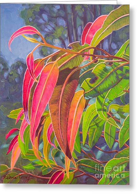 Sunlit Gumleaves 9 Greeting Card by Fiona Craig
