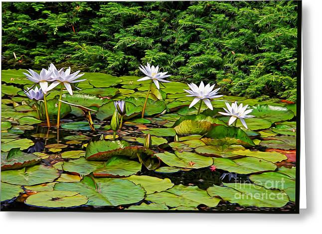 White Waterlily Greeting Cards - Sunlit Lily Pond by Kaye Menner Greeting Card by Kaye Menner
