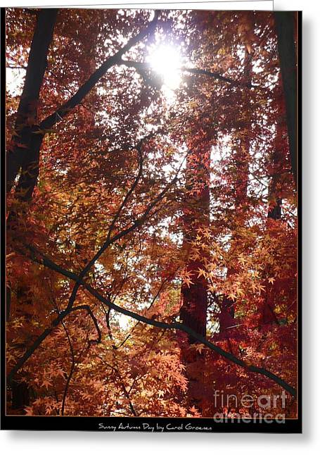 Landscap Greeting Cards - Sunny Autumn Day Poster Greeting Card by Carol Groenen