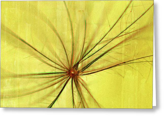 Canary Yellow Greeting Cards - Sunny Greeting Card by Bonnie Bruno
