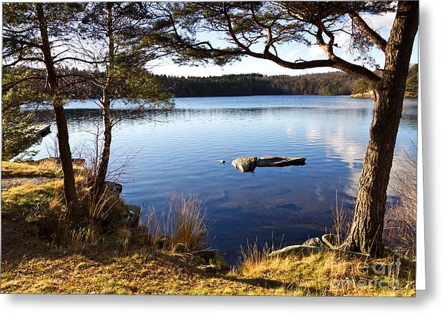 Photoart Greeting Cards - Sunny Day at the Lake Greeting Card by Lutz Baar