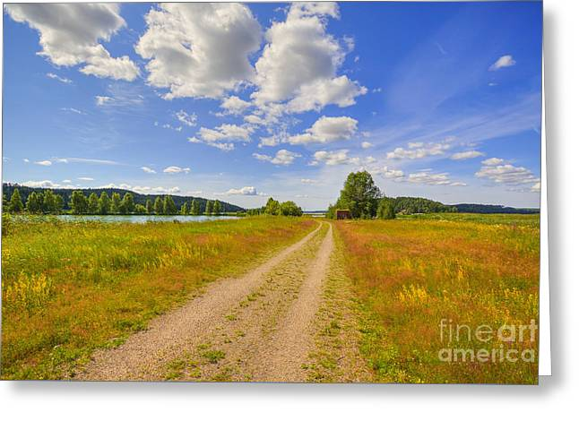Field. Cloud Greeting Cards - Sunny Day Greeting Card by Veikko Suikkanen