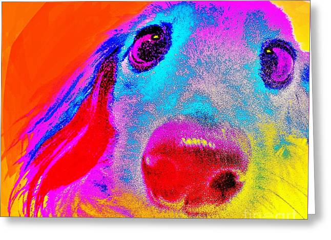 Puppies Digital Greeting Cards - Sunny Dog by Jasna Gopic Greeting Card by Jasna Gopic