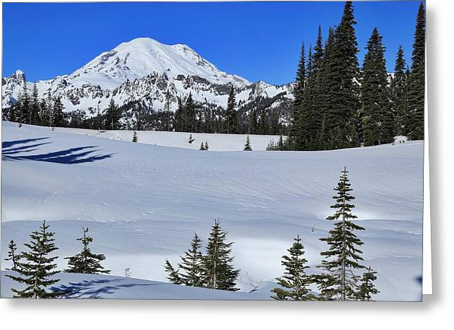 Mountain Range With Evergreens Greeting Cards - Sunny morning with Mount Rainier Greeting Card by Lynn Hopwood