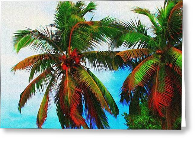 Best Ocean Photography Greeting Cards - Sunny Palms Greeting Card by Perry Webster