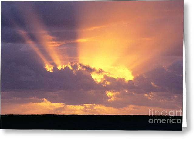 Amazing Sunset Greeting Cards - Sunrays At Sunset Greeting Card by Brent Black - Printscapes
