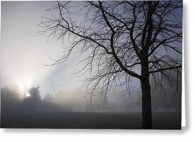 Sunrays Through Fog Greeting Card by Craig Tuttle