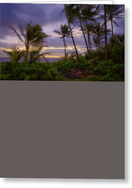 Ocean Shore Greeting Cards - Sunrise #48 Greeting Card by Harry Durgin