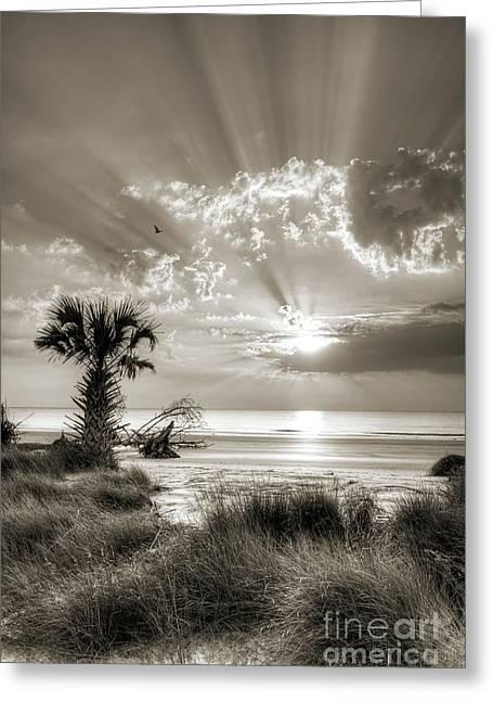 Sunrise Greeting Cards - Sunrise At Hunting Island State Park South Carolina Greeting Card by Dustin K Ryan