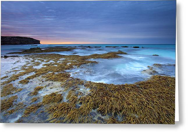 Sunrise Beneath the Storm Greeting Card by Mike  Dawson