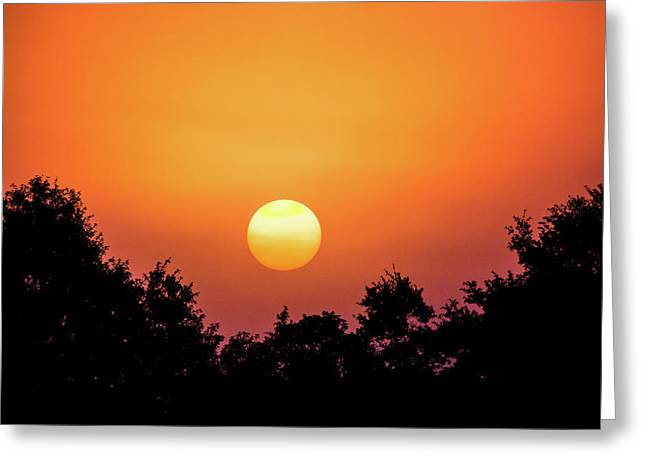 Sunrise Bliss Greeting Card by Shelby Young