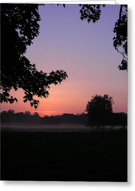 Sunrise Colors Greeting Card by Warren Thompson