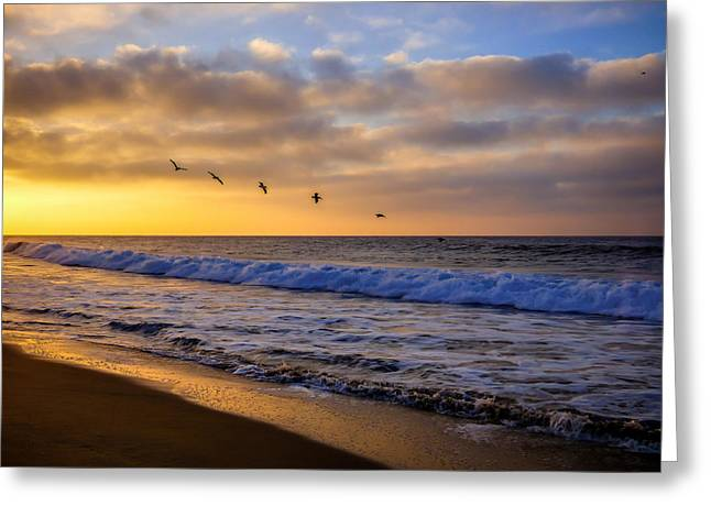California Ocean Photography Greeting Cards - Sunrise Flight Greeting Card by Pamela Newcomb