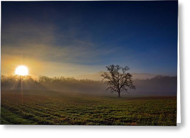 Sunrise In Cades Cove Greeting Card by Rick Berk