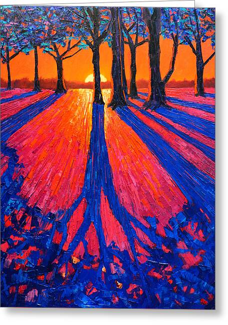 Sunrise In Glory - Long Shadows Of Trees At Dawn Greeting Card by Ana Maria Edulescu