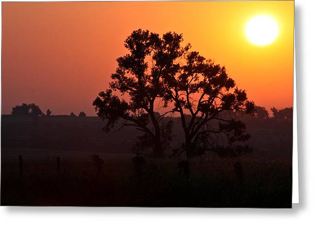 Hdr Landscape Greeting Cards - Sunrise Greeting Card by Mark Memmott
