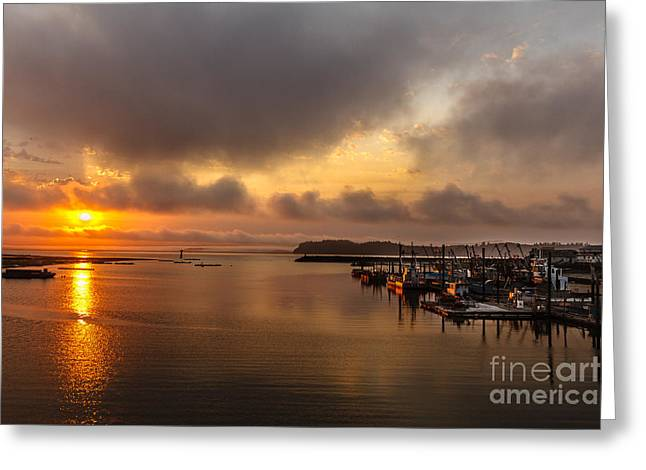 Wildlife Refuge. Greeting Cards - Sunrise On Willapa Bay Greeting Card by Robert Bales