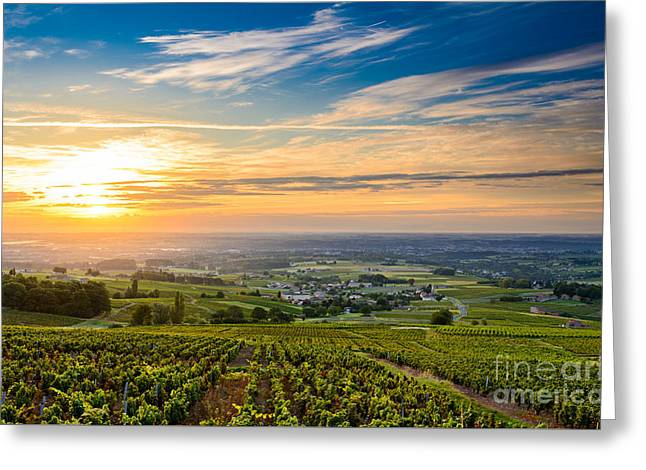 Gamay Photographs Greeting Cards - Sunrise over Beaujolais vineyards Greeting Card by Gael Fontaine