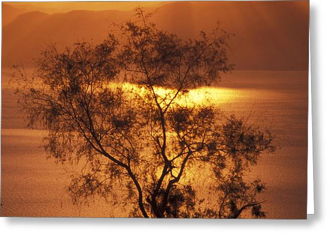 Sunrise Over Mount Nebo In Jordan Greeting Card by Richard Nowitz