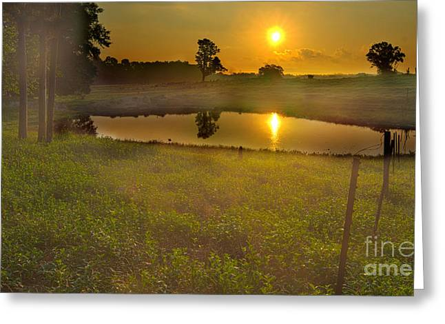 Pond Tapestries - Textiles Greeting Cards - Sunrise over Pond Greeting Card by James Hennis