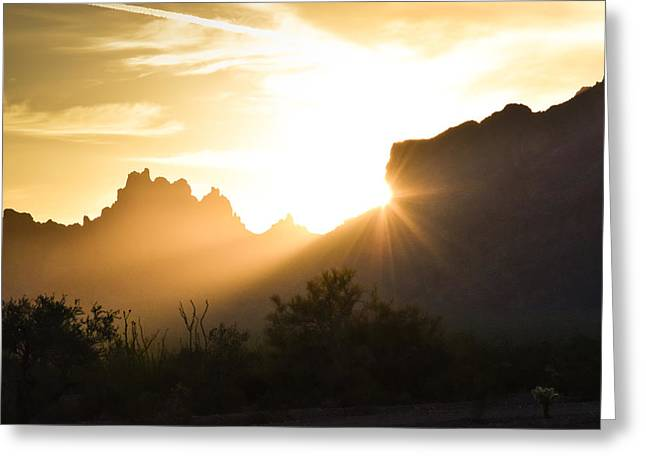 Wildlife Refuge. Pyrography Greeting Cards - Sunrise over Signal Peak Greeting Card by Lewis Quilici