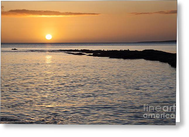 Sand Castles Greeting Cards - Sunrise over the Sea from Castle Sands Greeting Card by Mark Sunderland