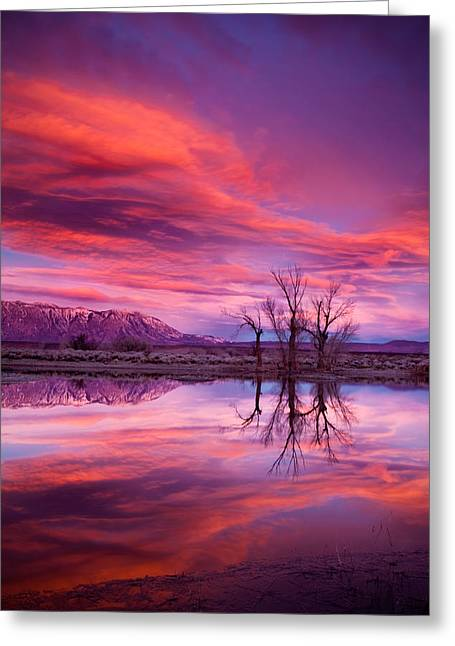 Bishop Greeting Cards - Sunrise Over the Tablelands Greeting Card by Dan Holmes