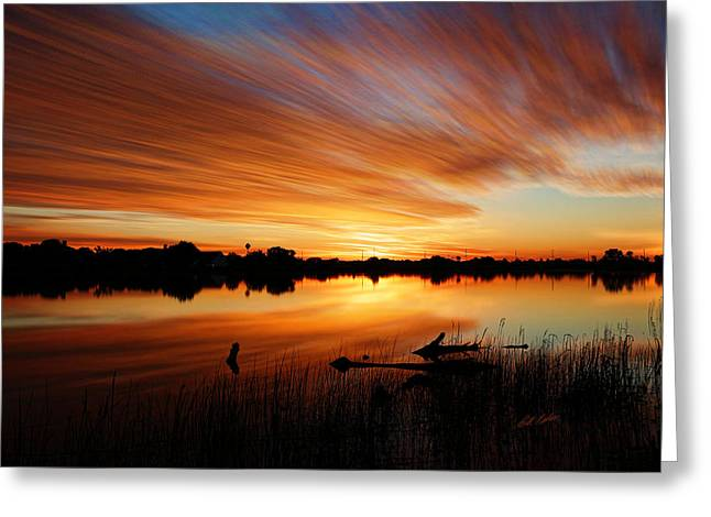 The Horse Greeting Cards - Sunrise Reflected Greeting Card by Bill Kesler