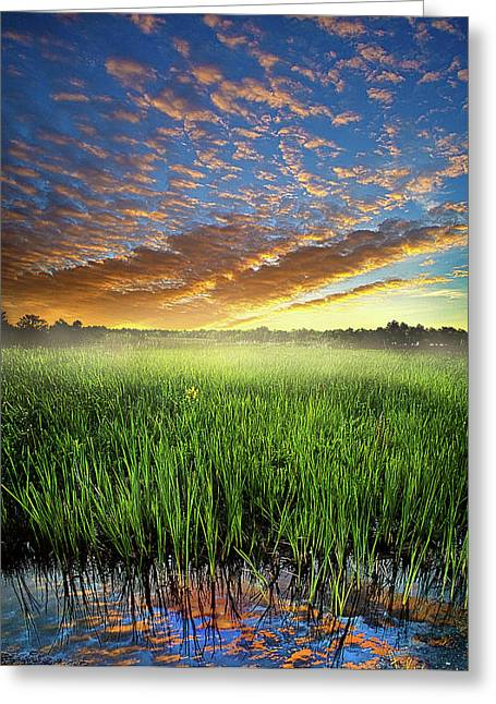 Myhorizonart Greeting Cards - Sunrise Reflected Greeting Card by Phil Koch