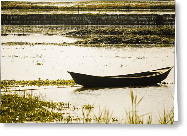 Bangladesh Greeting Cards - Sunrise Reflections and Boat in Bangladesh Greeting Card by Ju Sajjad0