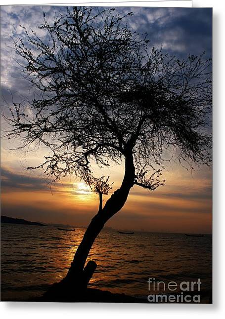 View Pyrography Greeting Cards - Sunrise Relaxing Greeting Card by Khun Nithiwadee