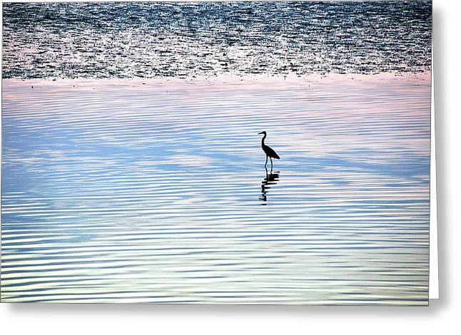 'sunrise Serenity' Greeting Card by Joanne Brown